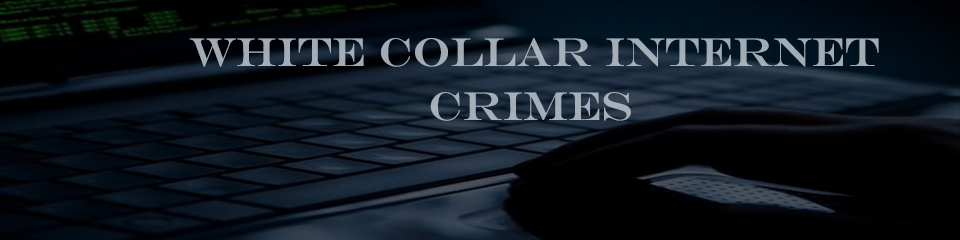 white collar internet crimes